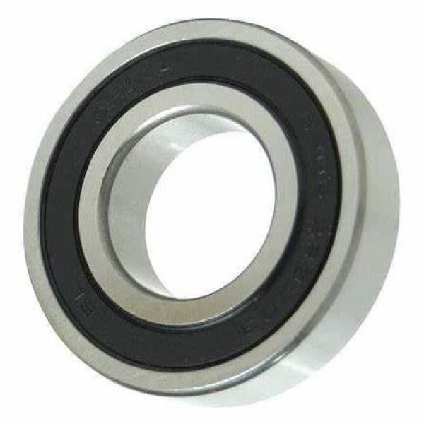 NSK motor bearings 6206DU DDU ZZ double sealed waterproof rubber ball head bearing #1 image